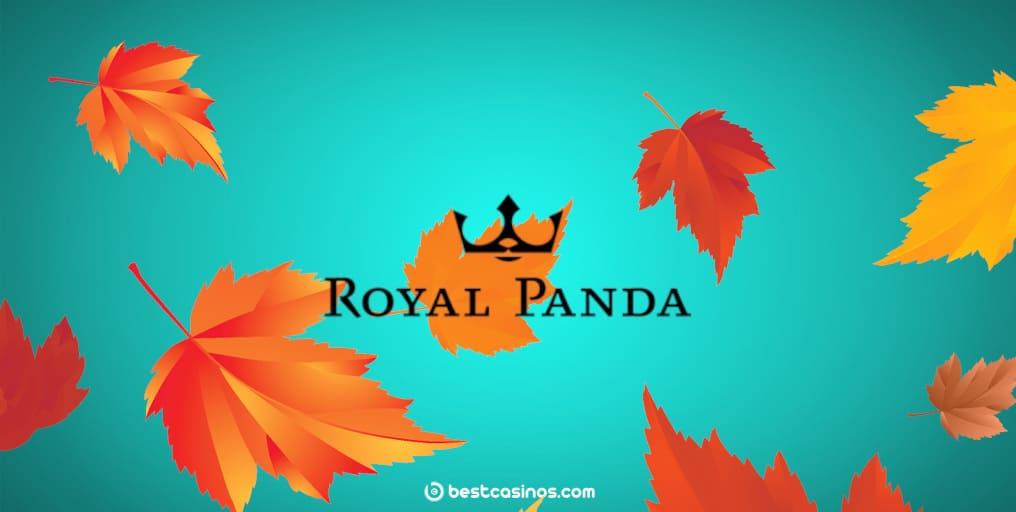 Royal Panda Autumn Harvest Promotion