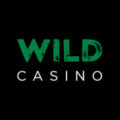 Online WIld Casino Review